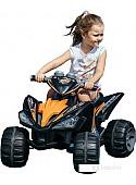 Электроквадроцикл Sundays Beach Car (черный) [BJ007]